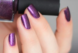 ilnp-poetry-spring collection 2015 (10)