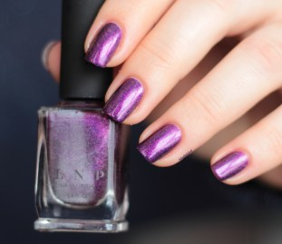 ilnp-poetry-spring collection 2015 (4)