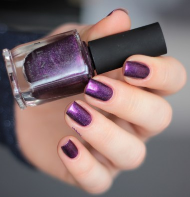 ilnp-poetry-spring collection 2015 (8)