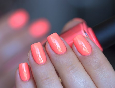 ilnp-summer collection 2015-so coral (3)