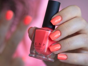 ilnp-summer collection 2015-so coral (7)