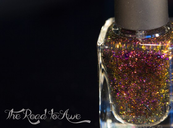ilnp-fall collection 2015_15
