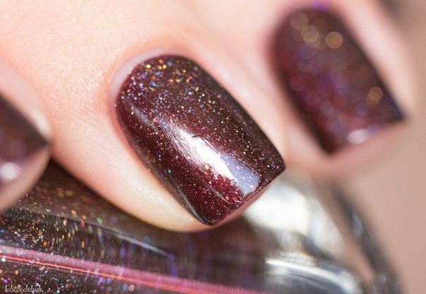 ilnp-overnight bag-fall collection 2015_12