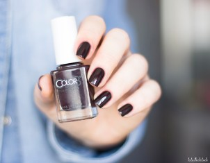 color club-cabin fever collection-cup of cocoa