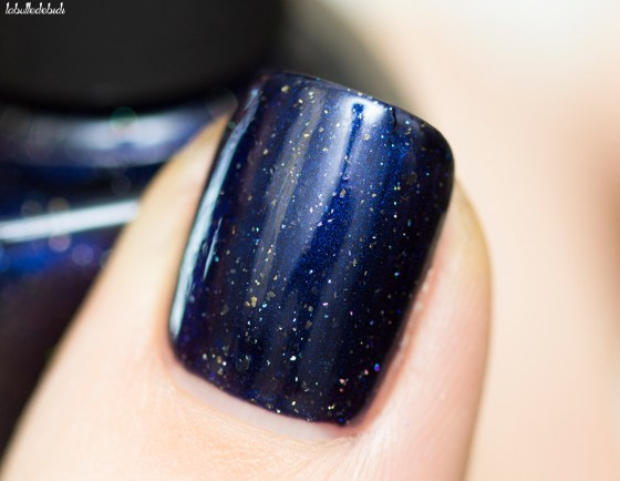 ilnp-winter-2016-looking-up_12