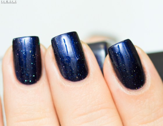 ilnp-winter-2016-looking-up_7