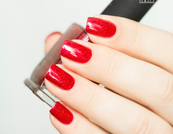 ilnp-winter-2016-stopping-traffic_17