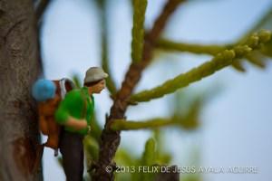 Felix-Ayala-1-9