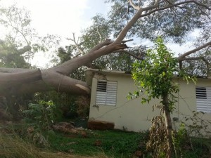Parte de los daños causados por el árbol en esta residencia de Aguadilla. (Foto cortesía del Cuerpo de Bomberos)