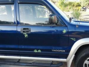 """Manchas de los impactos provocados por los disparos de armas """"Gotcha"""" contra vehículos desde un puente peatonal en Mayaguez (Suministrada)."""