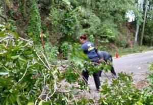 Aunque el parte no los mencionar, el trabajo de los voluntarios resultó valiosa durante la emergencia (Archivo).
