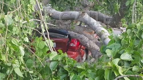Así quedó el Dodge Caliber al que un árbol le cayó encima en la carretera de La Bajura en Cabo Rojo (Suministrada Policía).