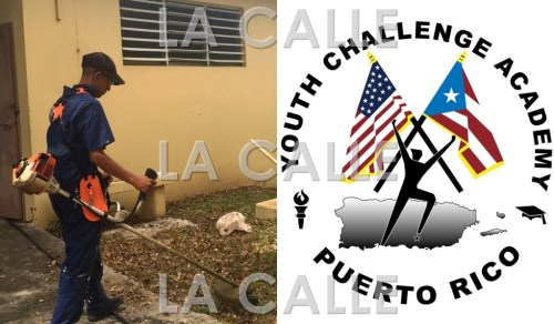 Los jóvenes del programa estarán laborando en las escuelas públicas de Cabo Rojo durante esta semana.