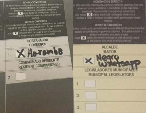 Dos de los votos por nominación directa emitidos en las Elecciones 2016 que circularon en las redes sociales. (Fuente Facebook).