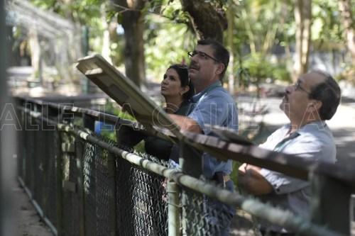 Funcionarios del Departamento de Recreación y Deportes y del Jardín Zoológico de Mayagüez inspeccionan las labores (Suministrada/DRD).