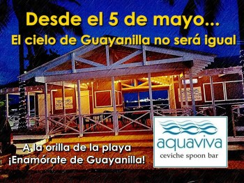 aquaviva guayanilla anuncio