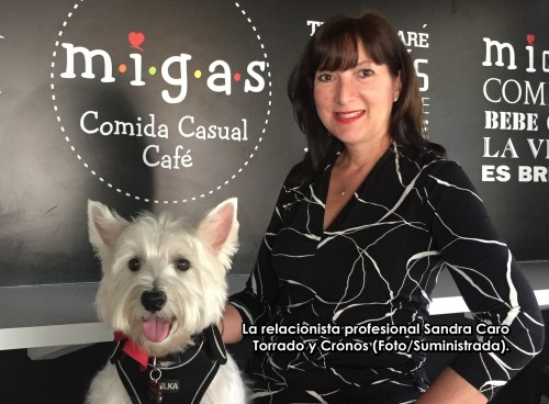 Sandra Caro Torrado y Cronos id