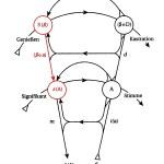 Graf des Begehrens - Linie S(-A) - s(A) rot