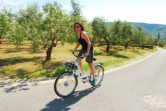 pedalling past olive groves in coastal Slovenia.