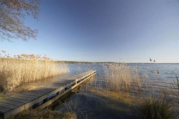 Location Lacanau Lac Location De Maison Sur La Plage Au