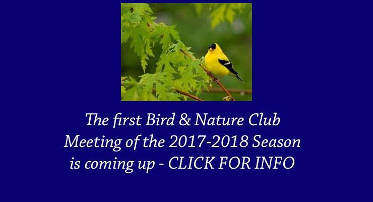 Bird & Nature Club Meeting – Oct 23, 2017