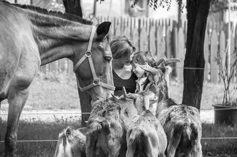Cavalli e caprette incontrano i bambini alla fattoria didattica La Cascina di Carola