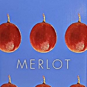 Domaine de preignes Merlot Rouge Pays d'Oc 10 litres