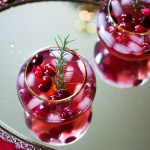 Holiday Cranberry Margarita Recipe - Food - @lacegraceblog1