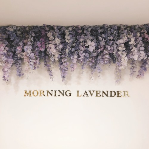 lace and locks home, home renovation, kitchen remodel, modern kitchen, infertility, morning lavender oc, girlboss, 2018 goals, business tips