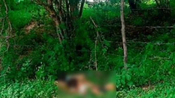 ¡Lo intentó salvar! Asesinan a balazos a una mujer y a un niño de 7 años en Tlatizapán. Encontraron sus cuerpos abrazados cerca del río de la carretera Jojutla-Chinameca