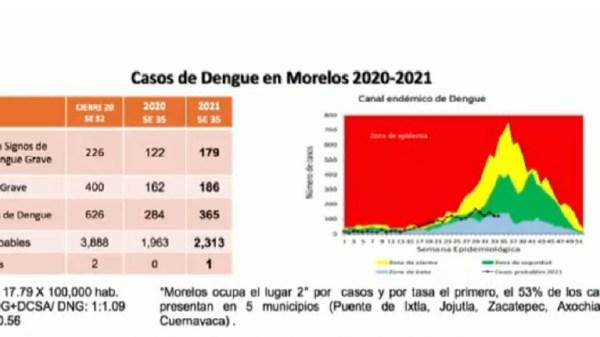 Morelos registra 365 casos confirmados de Dengue, ocupando así el segundo lugar a nivel nacional
