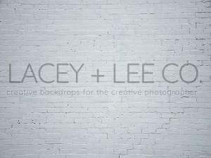 Light blue painted brick photo backdrop