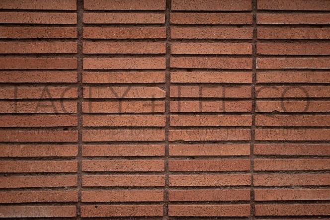 Red brick photo backdrop
