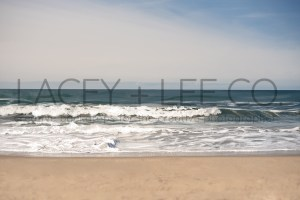 Ocean and sand photo backdrop