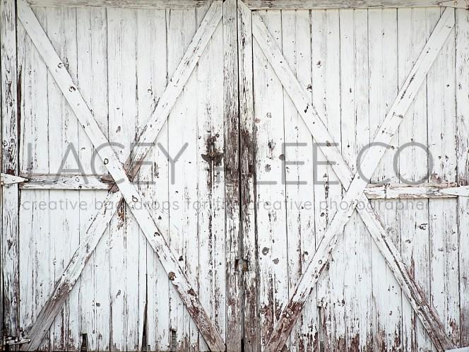 White Barn Doors Photography Backdrop