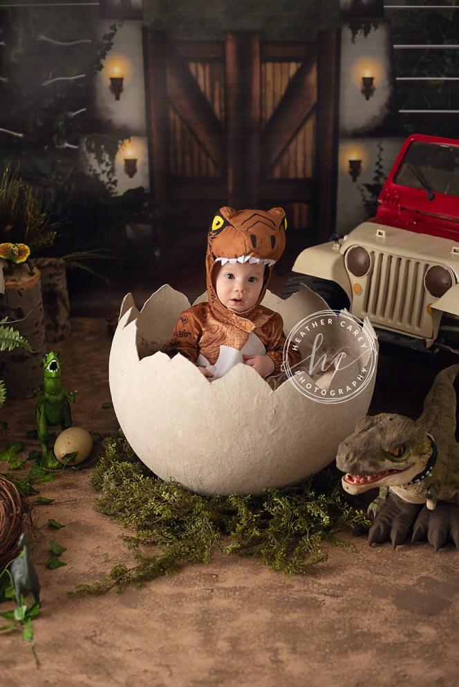 Jurassic Park Cake Smash Photography Backdrop