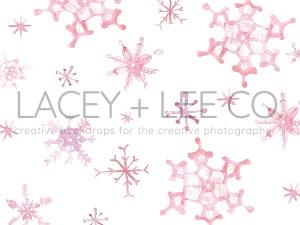 Winter Watercolor snowflake photography backdrop