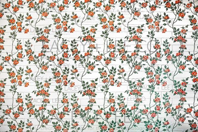Old Rose Wallpaper Photo Backdrop