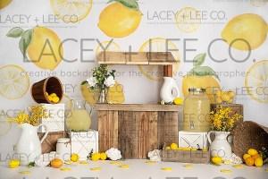 Lemonade stand backdrop photo