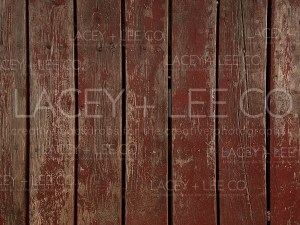 Little Red Hen colored Photo backdrop