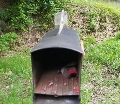 MailboxFireworks