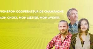 Les nouveaux messages de la Fédération des coopératives viticoles de la Champagne.