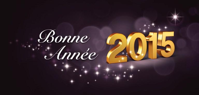 L'équipe des Écuries de la Chevée vous souhaite une bonne année 2015 !