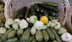 zucchine-ricette-lachipper.com