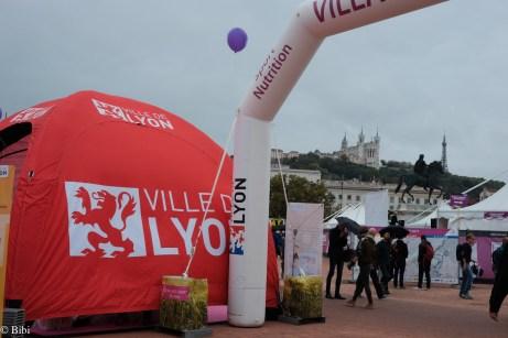 Run in Lyon 2017