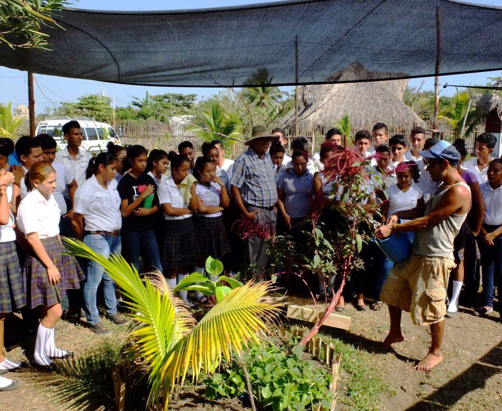 La Choza Chula permaculture garden in El Paredon