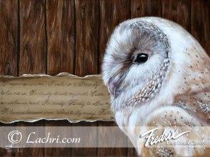 barn owl oil over acrylic painting