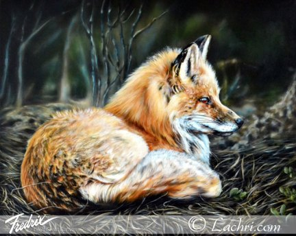 Fox oil over acrylic painting