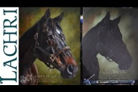 Speed Painting horse - oil over acrylic - Time Lapse Demo by Lachri