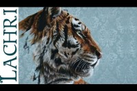 How to paint a tiger in  acrylic - Time Lapse Demo by Lachri
